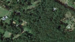 Δασος από αεροφωτογραφία