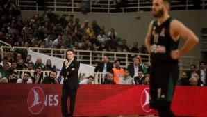 Παναθηναϊκός μπάσκετ Πιτίνο
