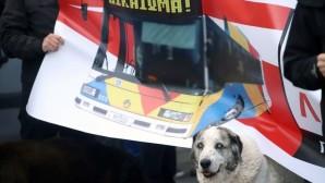 σκύλος διαμαρτυρία για τον ΟΑΣΘ