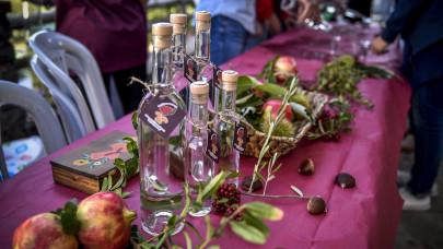Γιορτή Κάστανου και Τσίπουρου στη Ροδαυγή Άρτας