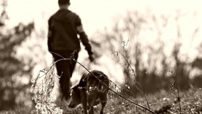 Αγόρι και σκύλος