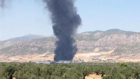 Μέγαρα:Μεγάλη φωτιά σε εργοστάσιο τυποποίησης ελαιολάδου