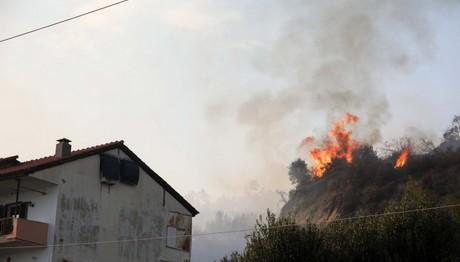 Υπό έλεγχο η φωτιά στη Χαλκιδική
