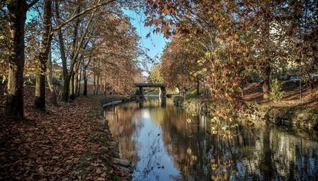 Σαν ζωγραφιά: Απόγευμα του Νοέμβρη στις όχθες του ποταμού