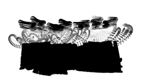 """""""Σμήνος πουλιών"""" στη Στέγη 1-4 Φλεβάρη"""