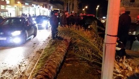 Σφοδρό τροχαίο στο Ηράκλειο-Ξεριζώθηκαν φοίνικες