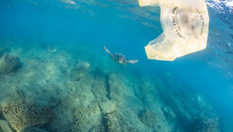 Πλαστική σακούλα βρέθηκε στο βαθύτερο σημείο των ωκεανών