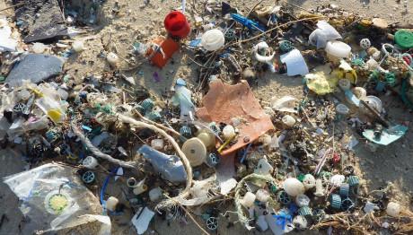 Πλαστικά σε ακτή