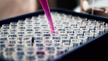 εργαστήρια μικροβιολογικά