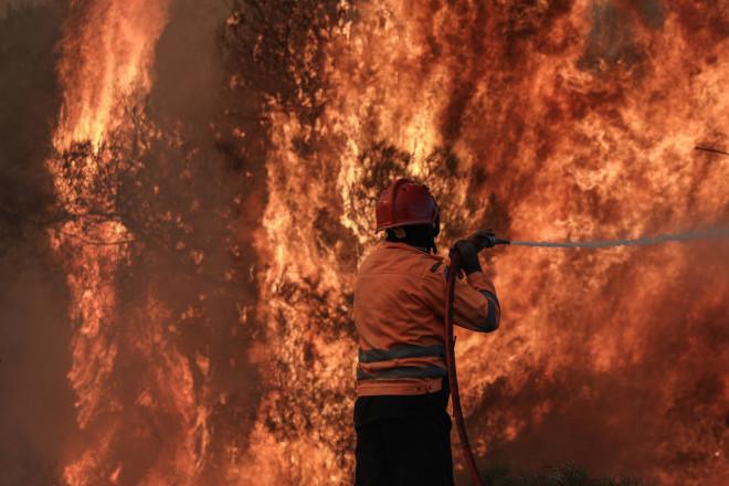 Φωτιά Κεχριές 1