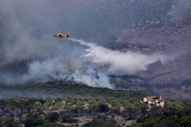 Φωτιά στην περιοχή Κολιάκι στην Επίδαυρο