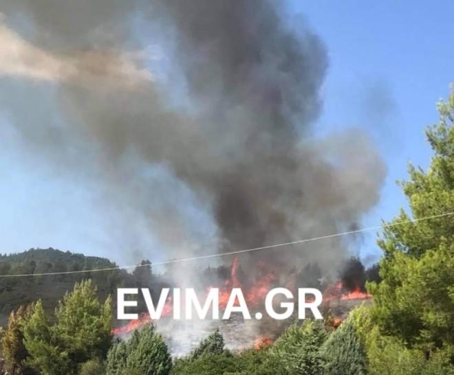 Μεγάλη πυρκαγιά στην Εύβοια Ροβιές