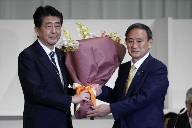 Ιαπωνία - εκλογές