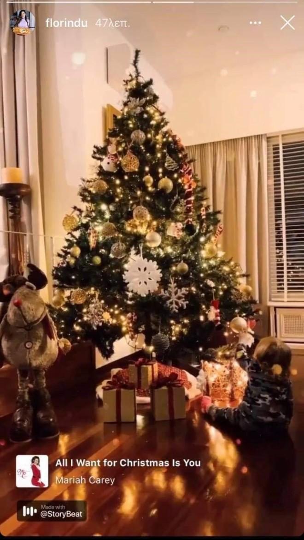 Πετρουτσέλι φλορίντρα χριστουγεννιάτικο δέντρο