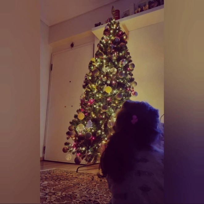 Κατερίνα Τσάβαλου Στόλισε το δέντρο