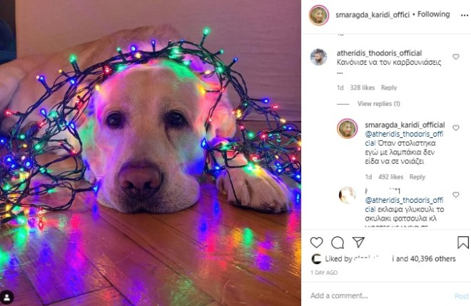 Σκυλος Σμαράγδα Καρύδη