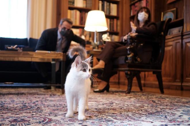 O Μητσοτάκης στο Προεδρικό Μέγαρο με την Καλυψώ