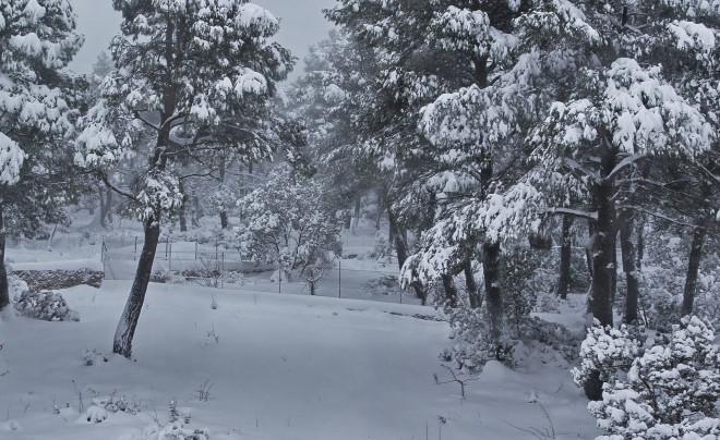 Χιόνια στην Ιπποκράτειο Πολιτεία