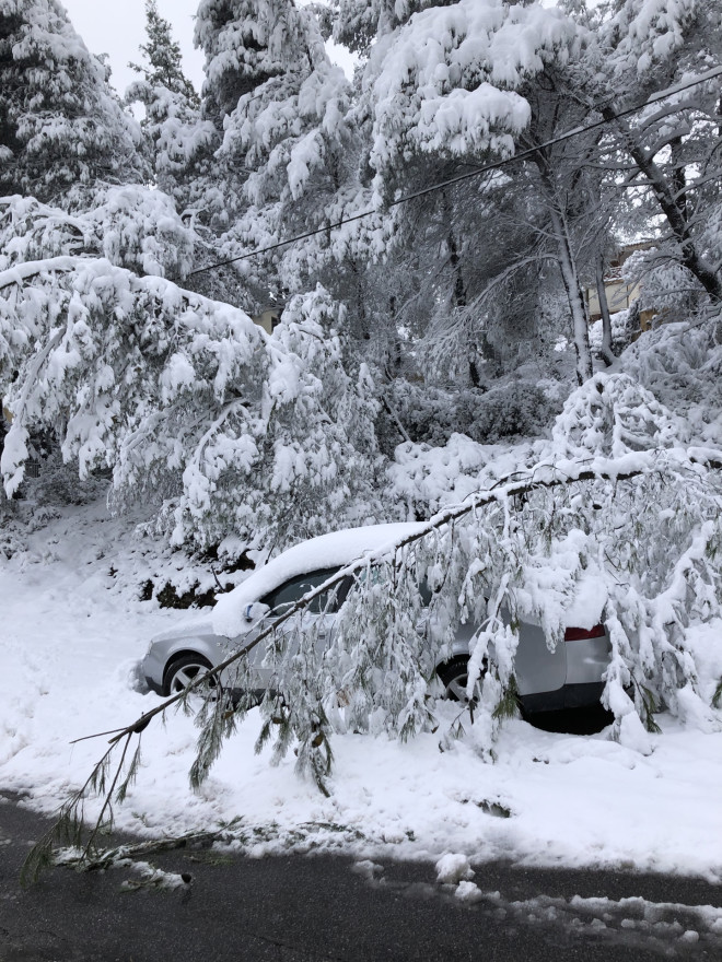 χιόνια ζημιές
