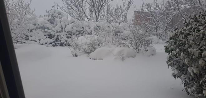 Πολιτεία χιόνι