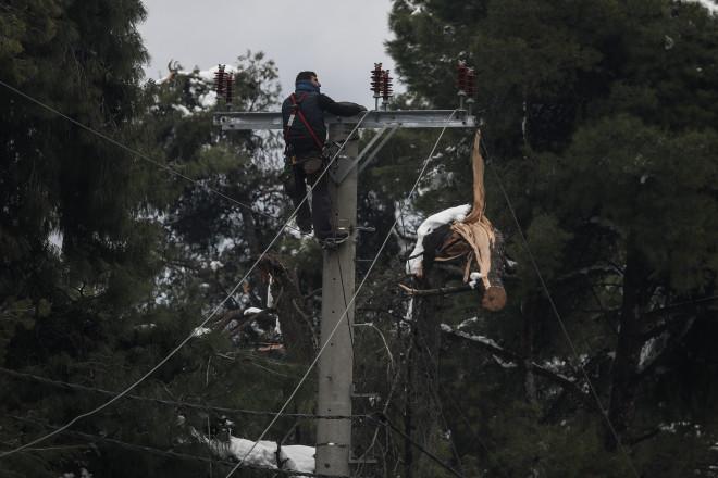 Προβλήματα από την κακοκαιρία λόγω πτώσης κλαδιών και δέντρων στα καλώδια, με αποτέλεσμανα μείνουνγια μέρες χωρίς ρεύμα περιοχές στα βόρεια προάστια- φωτογραφία Eurokinissi από τον Διόνυσο