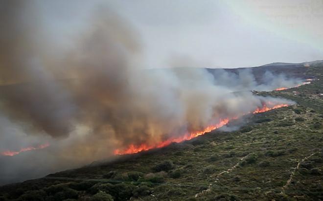 Χιλιάδες στρέμματα κάηκαν στην Άνδρο