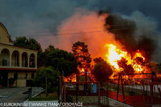 Δέντρα τυλίγονται στις φλόγες κατά τη φονική πυρκαγιά στο Μάτι στις 23/7/18- φωτογραφία Eurokinissi
