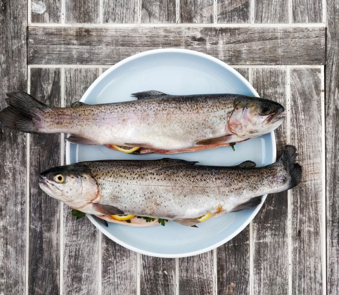 Οι υποψήφιοι των Πανελλήνιων πρέπει να τρώνε ψάρια, που έχουν φώσφορο