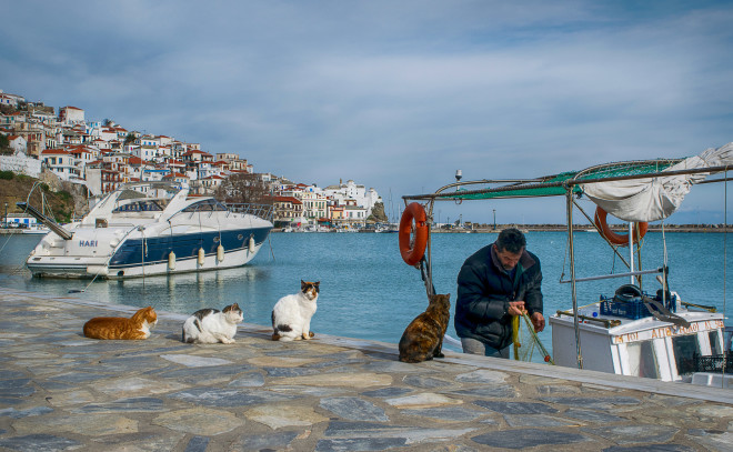 Λιμάνι Σκοπέλου- φωτογραφίαEurokinissi