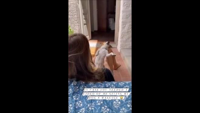 Δείτε την Αμαλία Κωστοπούλου να κάνει μασάζ στο σκυλάκι της μαμάς τη