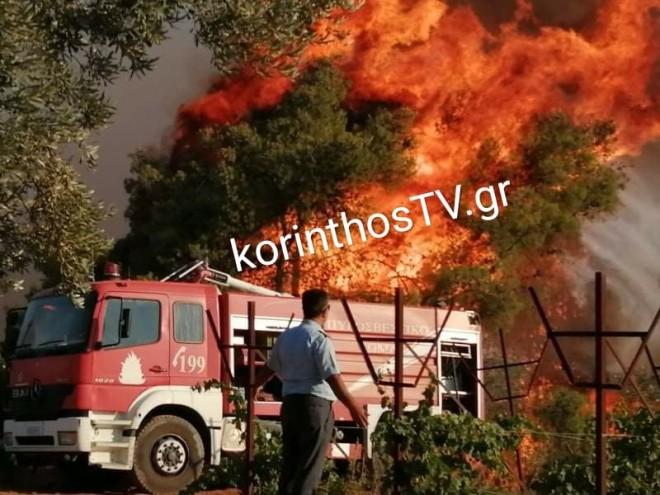 φωτιά Κόρινθος