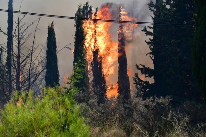 φωτιά στην Αχαϊα