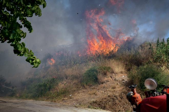 φωτιά Δροσιά