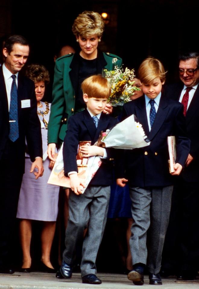 Πριγκίπισσα Νταϊάνα Πρίγκιπας Harry Πρίγκιπας William