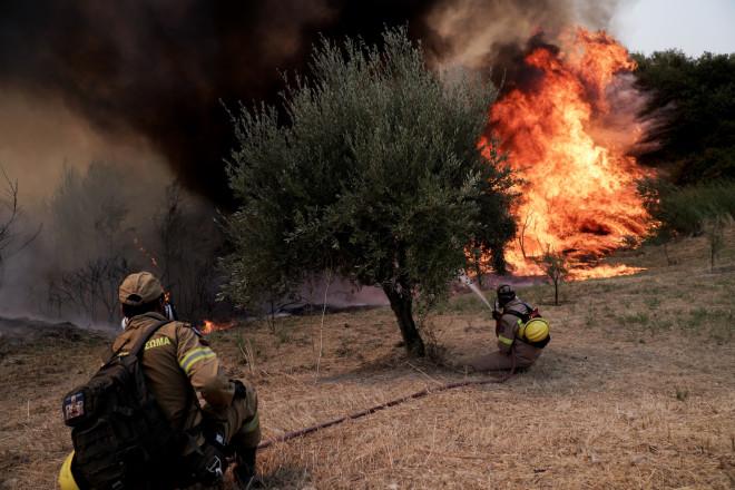 φωτιά Ηλεία