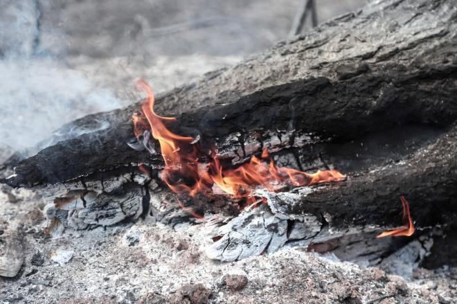 Κορμός δέντρου που καίγεται στην πυρκαγιά στην Εύβοια