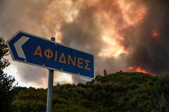 Κοντά στις Αφίδνες οι φλόγες από το πύρινο μέτωπο στην Αττική- φωτογραφία Eurokinissi