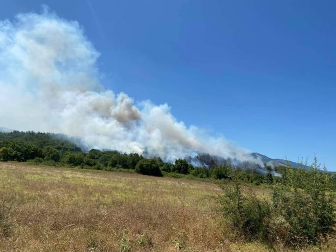 Φωτιά τώρα στη Νυμφαία-Εξετάζεται η εκκένωση οικισμών
