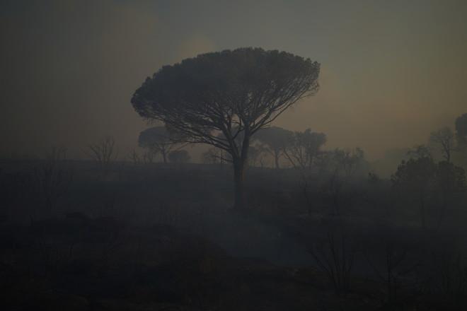 φωτιά Σεν Τροπέ