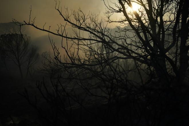 πυρκαγιά Σεν Τροπέ