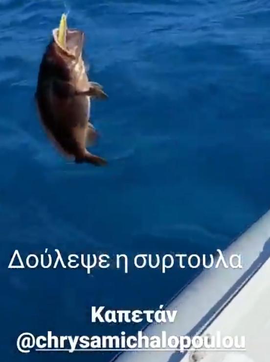 κουτσόπουλος χρυσα μιχαλοπούλου
