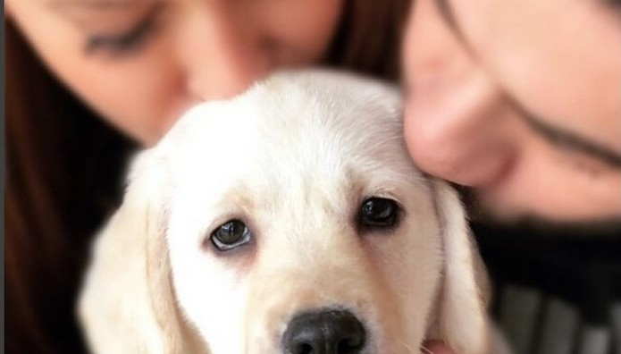 Χρηστίδου - Μαραντίνης έφτιαξαν Instagram στο σκυλί τους