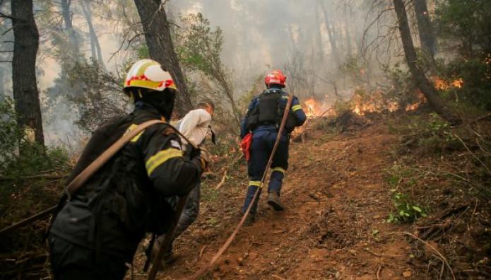 πυροσβέστες στην Εύβοια