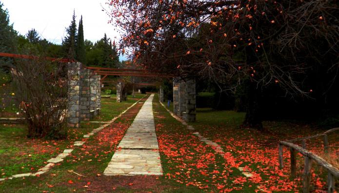 Ο Βοτανικός κήπος του ΕΚΠΑ