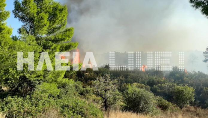 Ηλεία φωτιά