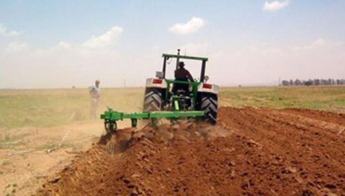 αγρότες τρακτέρ χωράφι